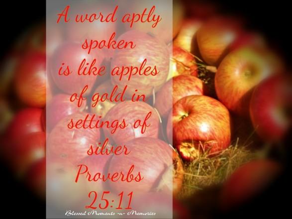 proverbs-25-11